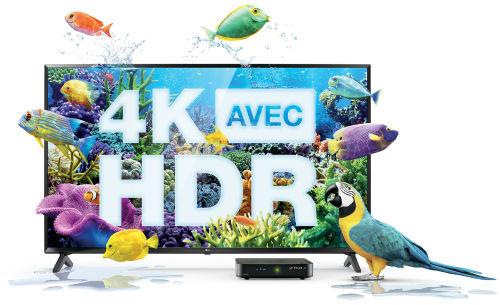 4K-HDR-Landing-Desktop-Fish
